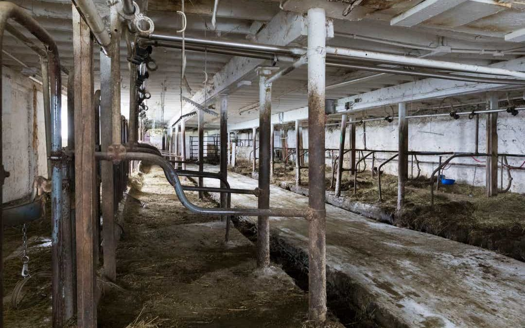 America's Dairyland, Wisconsin, hemorrhaging family-scale farmers